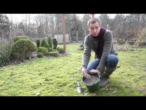 Vidéo de Jean-Michel Groult