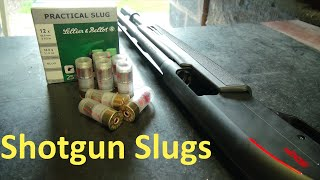 Shotgun Slugs: Using the Bead #rangetime