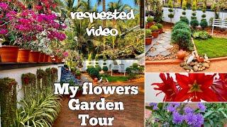 എന്റെ പൂന്തോട്ടം കളർഫുൾ ആക്കിയ  കുറച്ച് പൂചെടികൾ പരിചയപെടാം ||My Flowers Garden Tour...