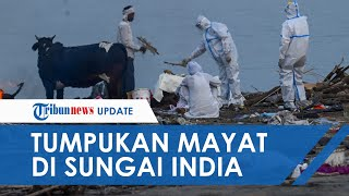 Potret Puluhan Mayat Warga India Menumpuk di Sungai Gangga, Diduga Dibuang karena Tak Mampu Kremasi