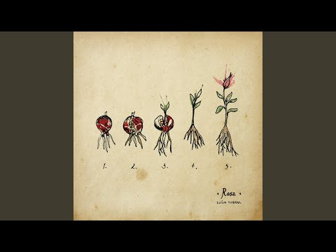 Querida Rosa online metal music video by LUÍSA SOBRAL