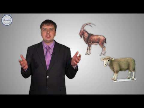 Возникновение скотоводства и земледелия