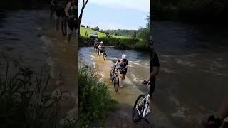 Kokosi se valí přes řeku, nic je nezastaví! ;-)