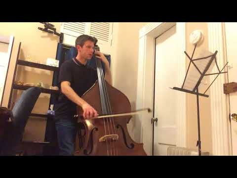 Mozart Symphony No.40 1st Movement (double bass excerpt) Take #1