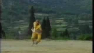 preview picture of video 'Shaolin Di Tang Quan by Shi Heng Long 释恒龙师傅演示少林地躺拳'