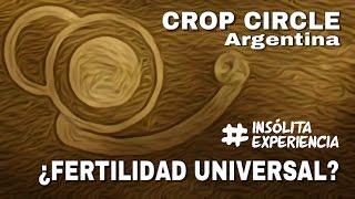 CROP CIRCLES I ¿Fertilidad Universal? Aparece el 1er. símbolo del 2016 en Argentina.