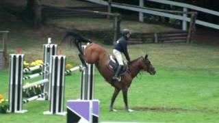 video of Quickly de Kreisker
