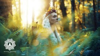 Relaxing Pagan Music 🌾1 hour of Fantasy Music for Relaxation & Meditation   Celtic Ambient Music 🌾