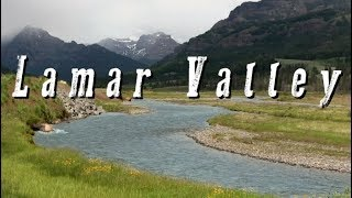Lamar Valley, Yellowstone National Park Video (HD)