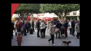preview picture of video 'Almoradi mercado'