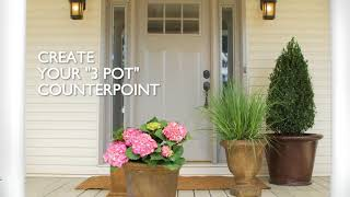 How To Spruce Up Your Front Porch W/ Plants