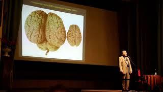 Сергей Савельев. Мозг современного человека. Лекция, 2017 год Центральный Дом Учёных, Москва