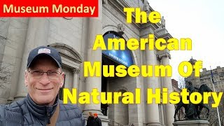 NYC Traveler - The American Museum of Natural History