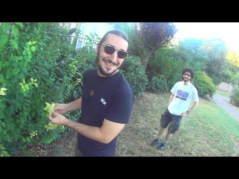 Video Casa sesso