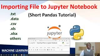 How to Import Different File Formats in Python (Jupyter Notebook + pandas)
