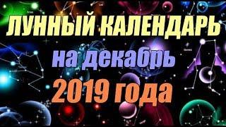 Рыболовный календарь на декабрь 2019