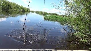 На рыбалку по рекам и озерам с удочками
