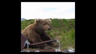 РЖД - Селектор. Дела тревожно. Поднялись медведи