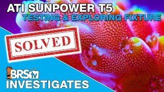 BRStv Investigates: ATI Sunpower T5 Lights for a SPS dominant reef tank?