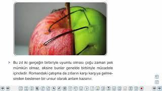Eğitim Vadisi 9.Sınıf TDE 15.Föy Roman 2 Konu Anlatım Videoları