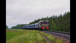 Тепловоз ТЭП60-0151 и дизель-поезд ДП3-002 на станции Старосельский.