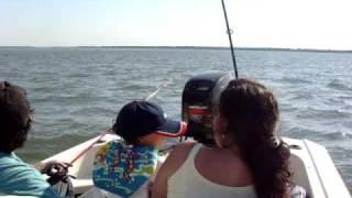 preview picture of video 'Pesca - Bogas en Paso de la Patria por Gabi'
