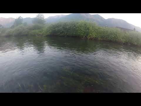 Giochi che pescano su una picca
