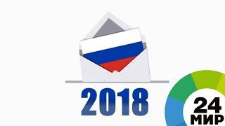 Выборы-2018: взгляд волонтера - МИР 24