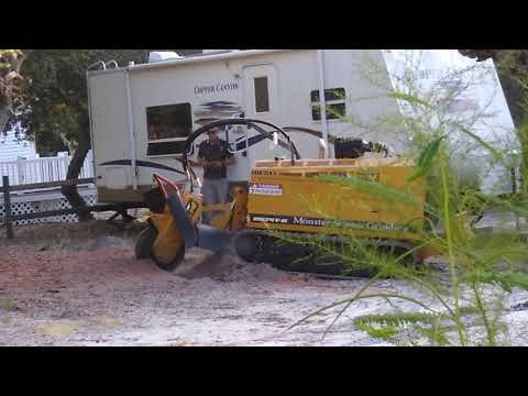 Southport Stump Grinding Same Day Service Call now 910-467-8369