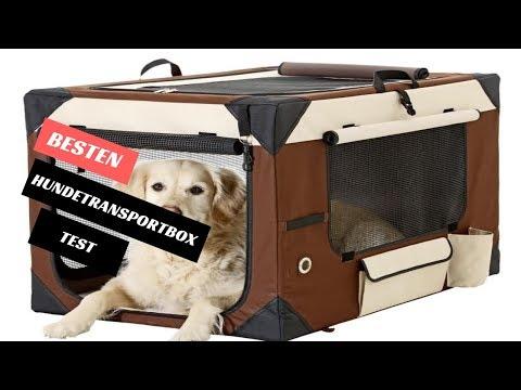 Die Besten Hundetransportbox Test 2019