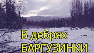 В дебрях Баргузинки (укв) /In the wilds of the Barguzinka River
