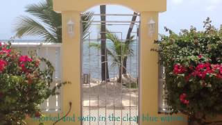 preview picture of video 'Toe's In the Sand. Colony Cove. St Croix, USVI'