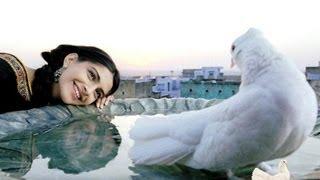 Rehna Tu Full Song | Delhi 6 | Abhishek Bachchan, Sonam