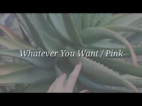 Pink -Whatever You Want (Lyrics)