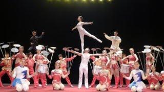 Great Chinese State Circus   Swan Lake Amazing Video |FUN ZONE|