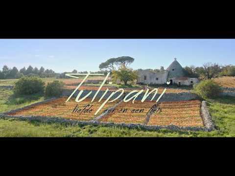 Tulipani: 'Sprookjesachtige tragikomedie' over een romantische Zeeuwse boer
