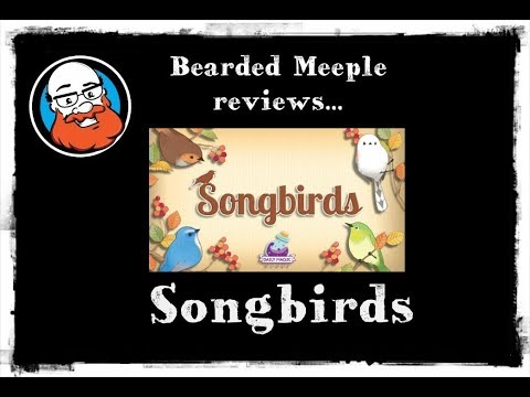 Bearded Meeple reviews : Songbirds