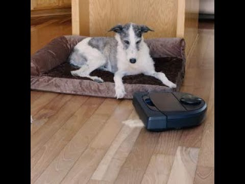 Review Neato Robotics D6 Connected Laser Guided Robot Vacuum for Pet Hair, Works with Amazon Alexa