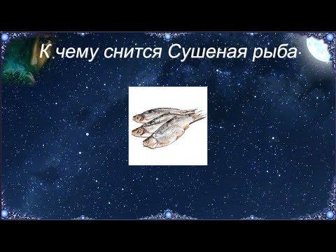 К чему снится Сушеная рыба (Сонник)