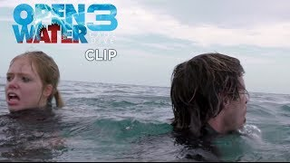 Open Water 3  Cage Dive  Clip In Mare