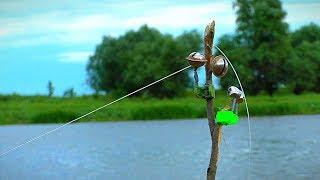 НОЧЁВКА. БЕШЕНЫЙ КЛЁВ САЗАНА НА ЗАКИДУШКИ. Рыбалка на речного карпа.