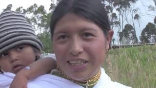 The Indigenous Village Of Yambiro Ecuador