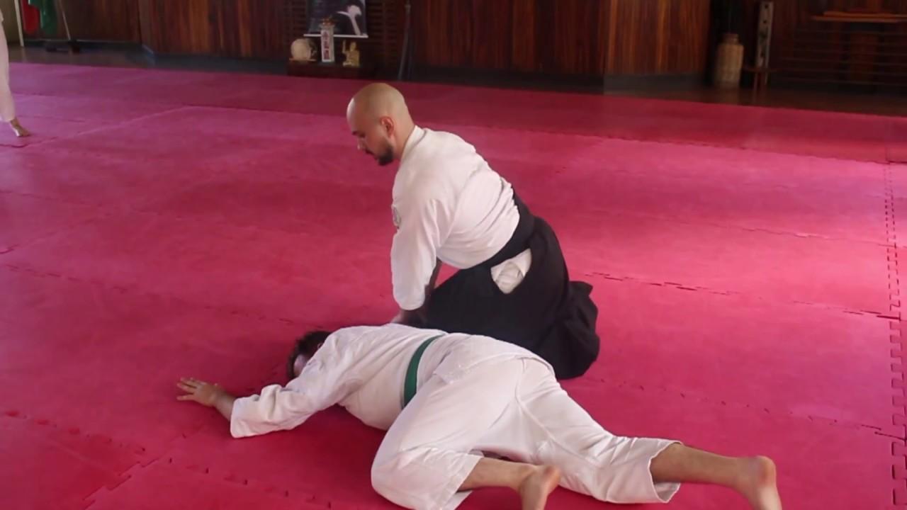 Imagem: Juiz de Fora tem fim de semana com Aikido e Hapkido