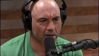 Joe Rogan on the New Zealand Shooting