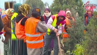 Таджикистанцы уезжают из страны