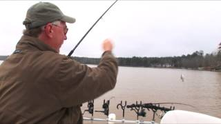 Spider Rigging For Crappie.mp4