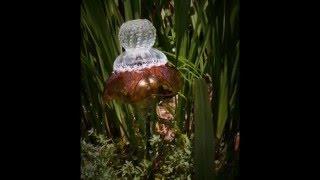 Garden Art:  Glass Garden Totems