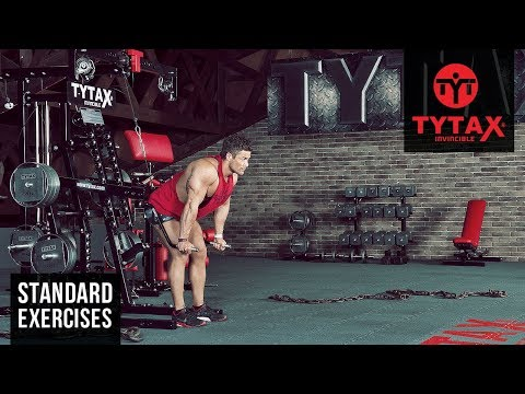 Lever Standing Bent-Over Chest Press (Parallel Grip) | TYTAX® M2