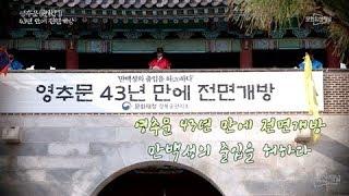 [문화유산 뉴스] 영추문, 43년 만에 전면개방