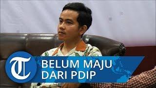 Sekjen PDIP Hasto Kristiyanto Sebut Gibran Belum Diputuskan Jadi Calon Wali Kota Solo dari PDIP